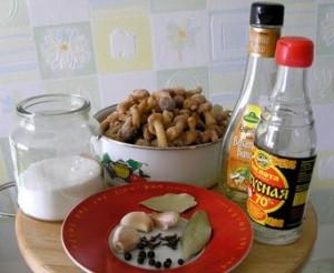 Ингредиенты для приготовления маринованных опят фото | Ингредиенты для приготовления маринованных опят